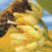 Bee_pollen_logo.jpg